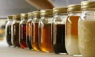 liquid bio-fuel